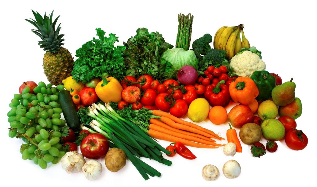 alimentos probioticos articulos