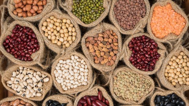 alimentos probioticos activia