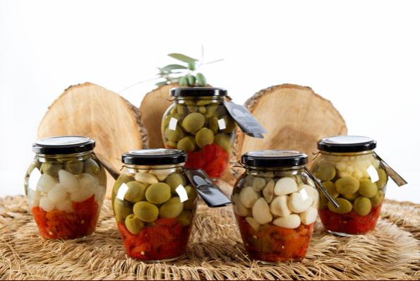 alimentos probioticos flora intestinal