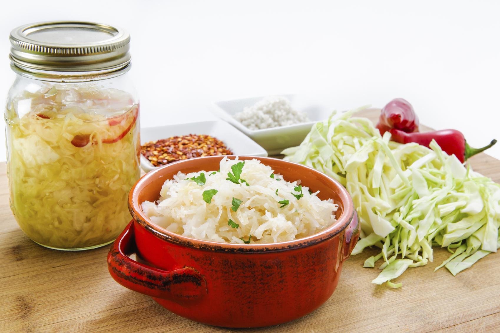 alimentos probioticos funcion