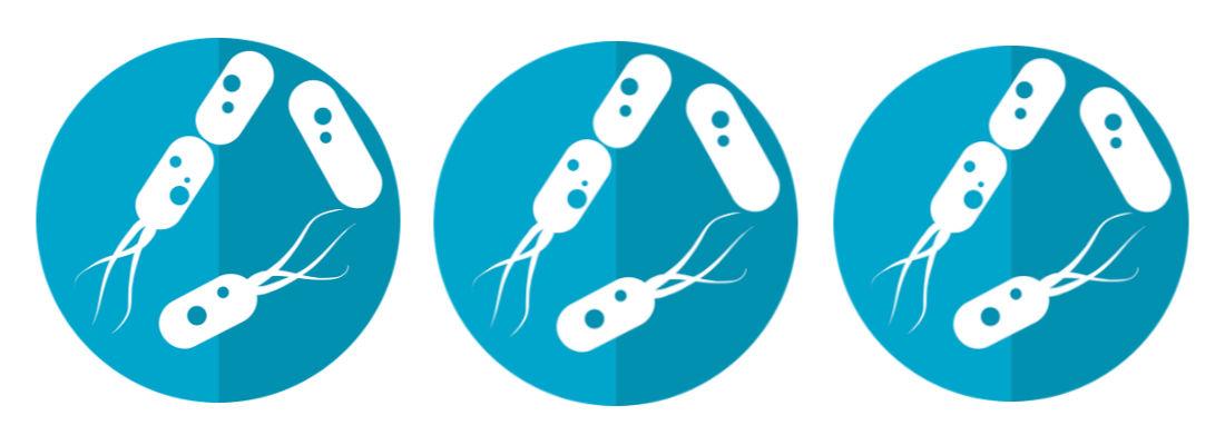 probioticos y prebioticos diferencia