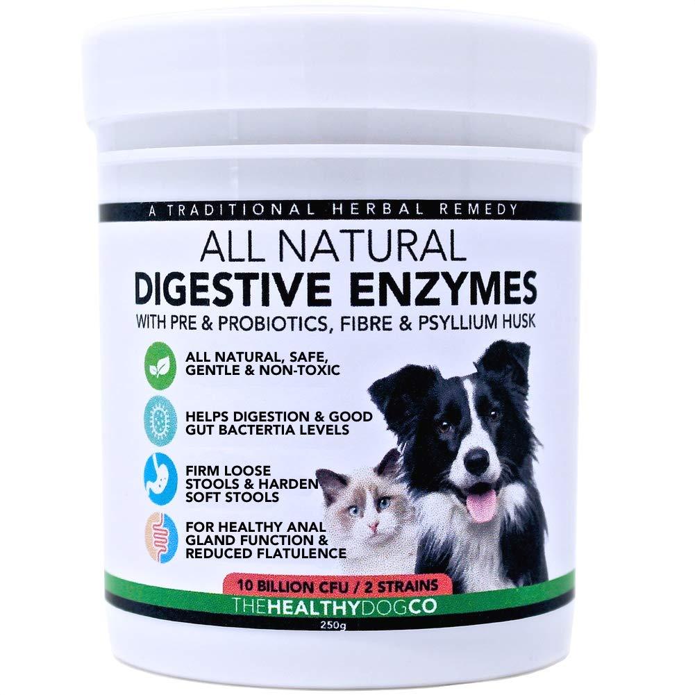alimentos probioticos para perros