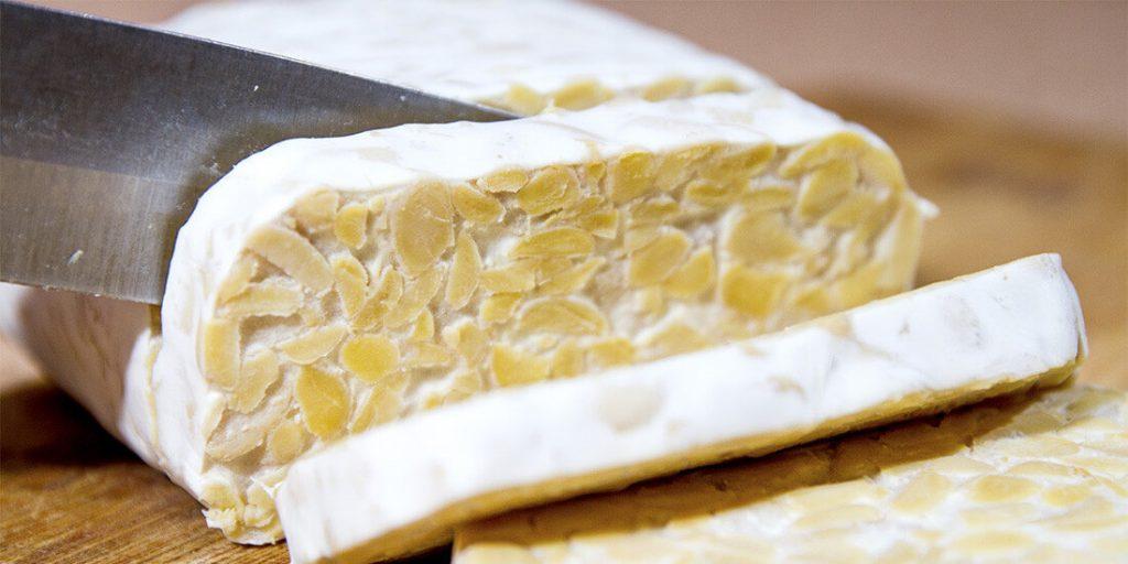 alimentos probióticos sin lactosa
