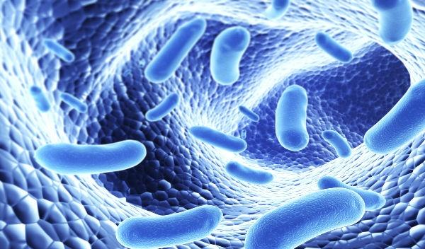 probioticos para niños estreñimiento