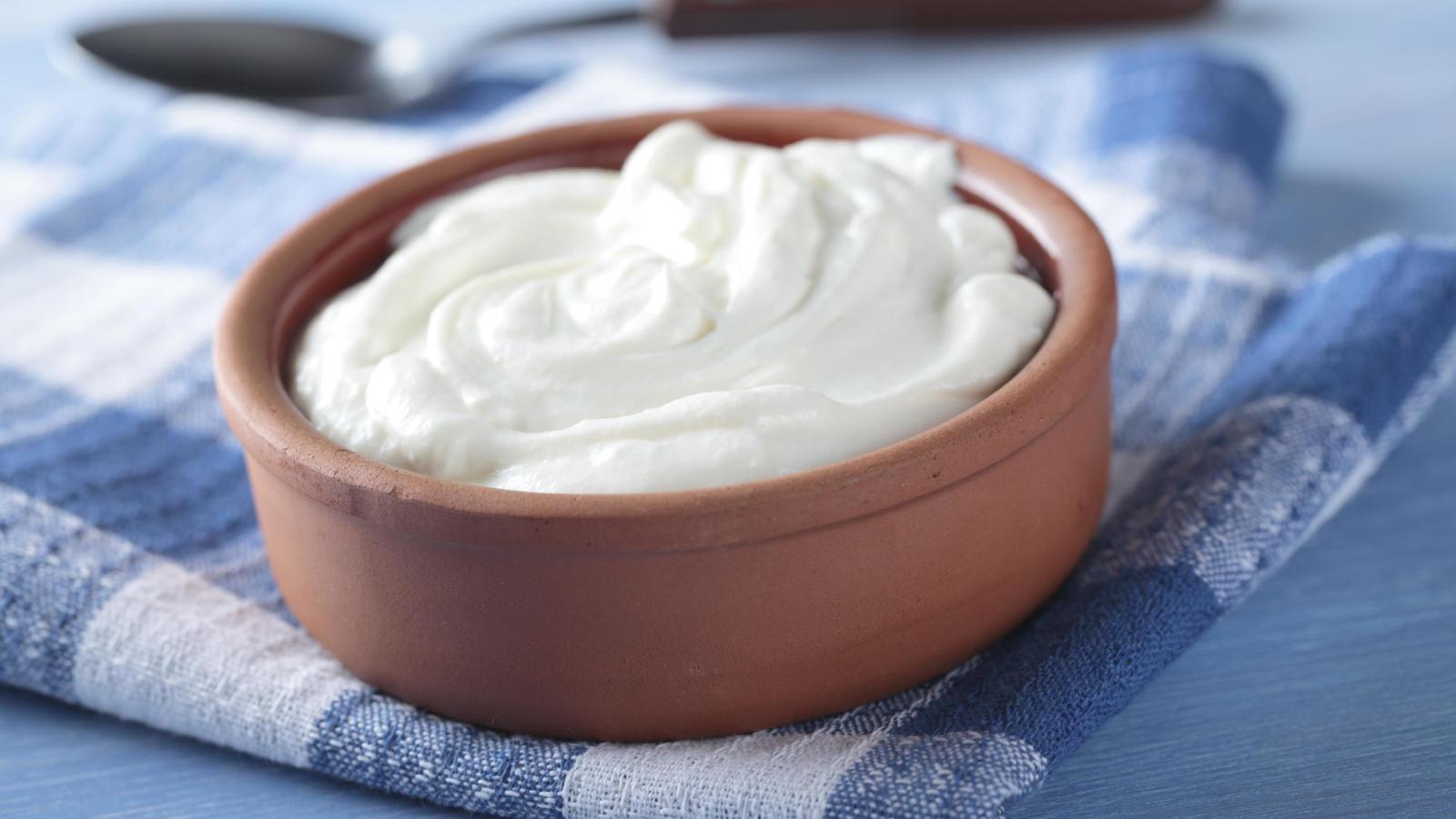 yogures con probioticos activos